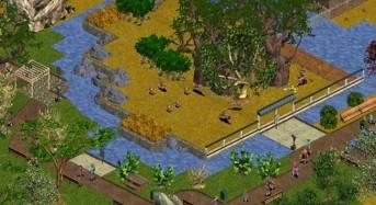 Affen Insel kostenlos spielen